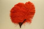 Feather Fan; c. 1920; LDFAN1993.36