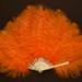 Feather Fan; c. 1920; LDFAN2003.60.Y