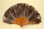 Feather Fan; LDFAN2003.57.Y