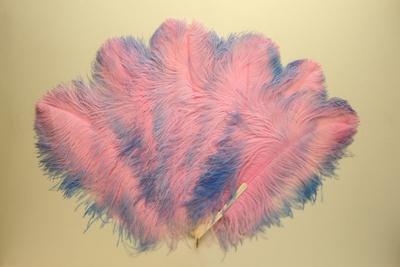 Feather Fan; LDFAN1992.41
