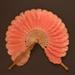 Cockade Fan; c. 1870; LDFAN2012.15