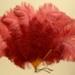 Feather Fan; c. 1920; LDFAN1991.40