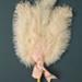 Fixed Feather Fan; c. 1900; LDFAN2003.88.Y