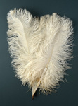Feather Fan; 1920s; LDFAN2006.26