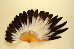 Feather Fan; c. 1895; LDFAN2003.45.Y