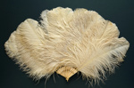 Feather Fan; c. 1920; LDFAN1996.26