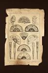 Article; 1897; LDFAN2010.79