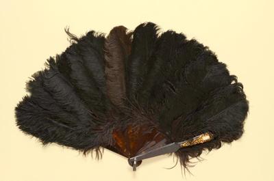 Feather Fan; c. 1880s; LDFAN2003.256.Y