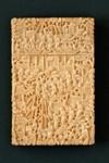 Ivory Card Case; LDFAN1991.26