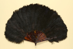 Feather Fan; c. 1900; LDFAN2003.85.Y