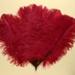 Feather Fan; c. 1920; LDFAN2003.90.Y