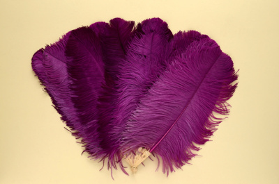 Feather Fan; c. 1920; LDFAN2011.110