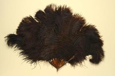 Feather Fan; LDFAN1995.46
