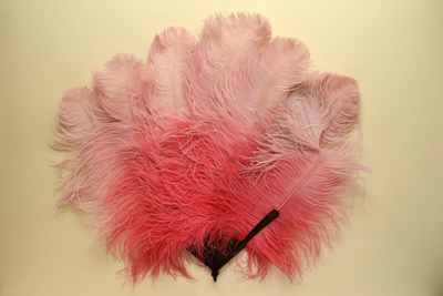 Feather Fan; LDFAN1992.40