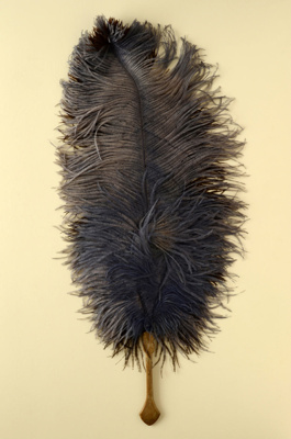 Fixed Feather Fan; c. 1920; LDFAN2003.89.Y