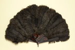 Feather Fan & Box; Edward & Jones; c. 1880; LDFAN1992.26.1 & LDFAN1992.26.2
