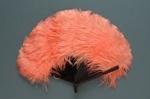 Feather Fan; 1920s; LDFAN2006.56