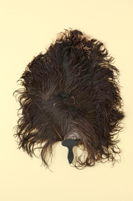 Fixed Feather Fan; LDFAN2003.300.Y