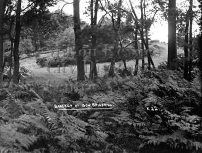 Monochrome photograph; Maurice Kitchener; 1925 to 1936; 3-173