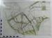 Willen Park, Milton Keynes - Architect's plans and drawings; Seed, John, Mr; JSD/2/7