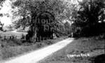 Bozenham Mill Lane, Grafton Regis
