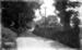 Monochrome photograph; Maurice Kitchener; 1925 to 1936; 1-111