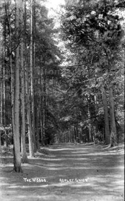 Monochrome photograph; Maurice Kitchener; 1925 to 1936; 2-101