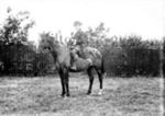 Horseman in period costume, Olney