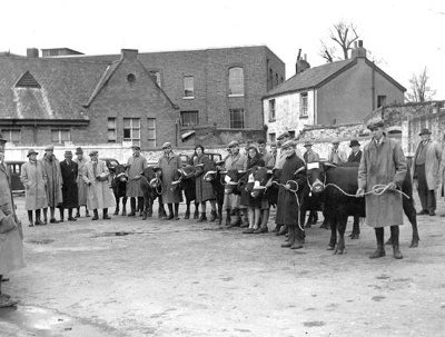 Cattle Market, Barnstaple; Pat Pidler; 6-7026