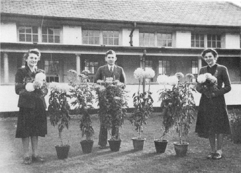 Secondary Modern School, Braunton 1950\'s; 1030 on eHive