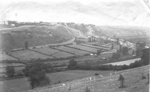 Torrington from the West; Y.J. Northcote; 1995; 189