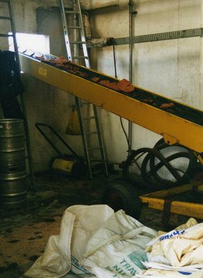 Cheese on conveyor belt; 5-11401