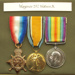 medals; Government; WSRM54