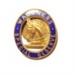 Wagoner's Lapel Badge; 1913; WSRM18