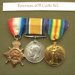 Medals; Government; WSRM32