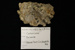 Dolomite; Mineral--Carbonate; GE 2.5a.1 / 8 - 2014