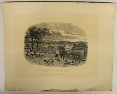 Bendigo from Road to Eagle Hawk; Sands & Kenny; S.T. Gill; 1857; 02.0662