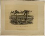 Ballarat Flat, from the Black Hill; Sands & Kenny; S.T. Gill; 1857; 02.0663