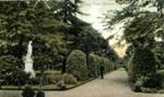 Spring Time, Ballarat Gardens; 95.1778