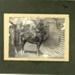 Photograph, Military Gentleman on a Horse; Feb 1908; 83.4603
