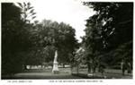 View in the Botanical Gardens, Ballarat, Vic.; 96.0759