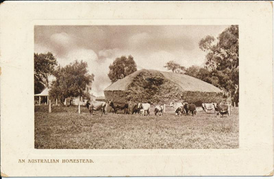 An Australian Homestead; Wildt and Kray; 1910; 2014.1132