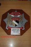 Appliance brigade crest - Norfolk Fire Service; NFMBDM2013.79