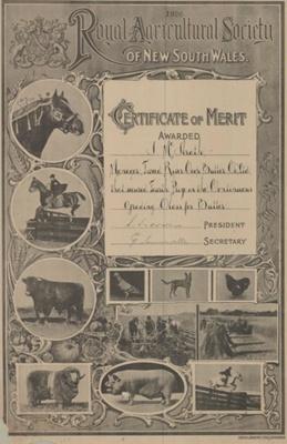 Certificate of Merit; 1926; MUS2000.52.14