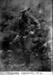 Photograph; Circa 1914; pp492