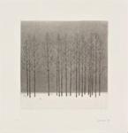 Talvikuva, (1/50) / Vinterbild, (1/50) / Winter scene, (1/50); Kaskipuro, Pentti; 1979; DAM2174