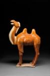 Hautaveistos, seisova kaksikyttyräinen kameli / Gravfigurin, stående kamel / Tomb figurine, standing Bactrian camel; 618-907 AD; DAM6269