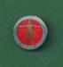 Badge: Critical Care Course, Royal Adelaide Hospital; Ca 1980; AR#218