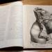Book: Gravid Uterus; 1774; AR#6