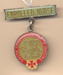 Badge: Mount Gambier Hospital, Enrolled Nurse; Ca 1980; AR#1011